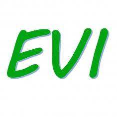 EVI - Erproben • Vermitteln • Integrieren