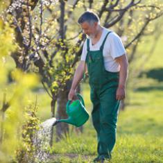 Fachkraft für Garten- und Landschaftsbau (mit Führerschein möglich)