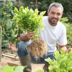Fachkraft Garten-und Landschaftsbau mit berufsbezogenem Deutsch und Führerschein
